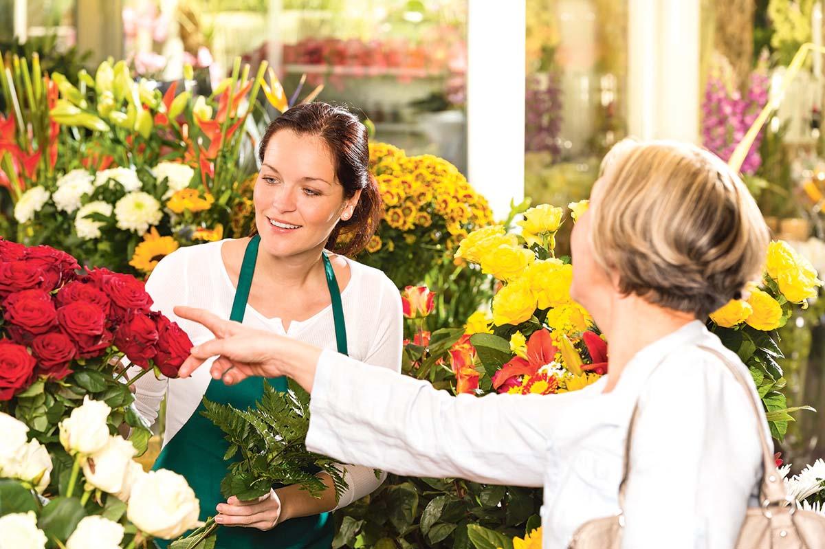 cvećare na novom beogradu